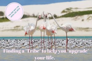 Find Your Tribe to Upgrade Your Life